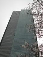 Sakura2_10