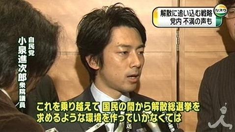 Shinjiro17